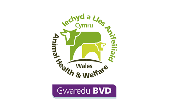 Gwaredu BVD - Animal Health Welfare Wales logo