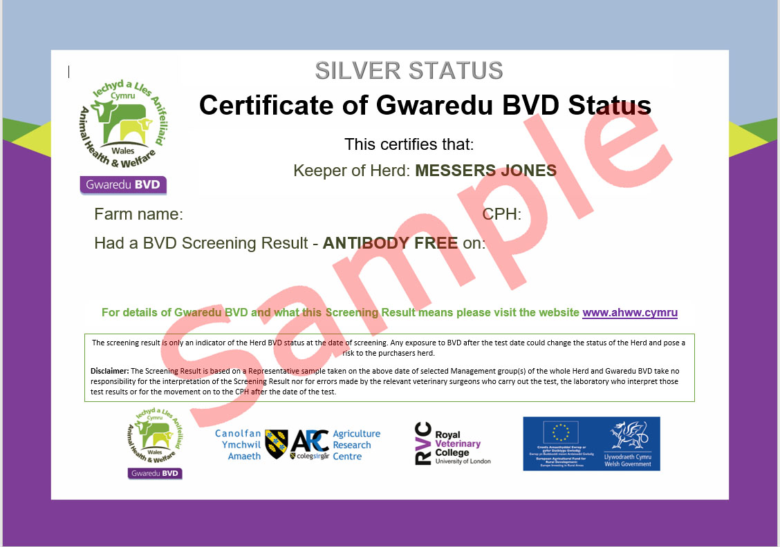 Sample of BVD Certificate